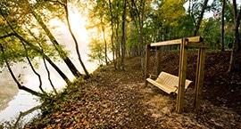 Riverside Swing
