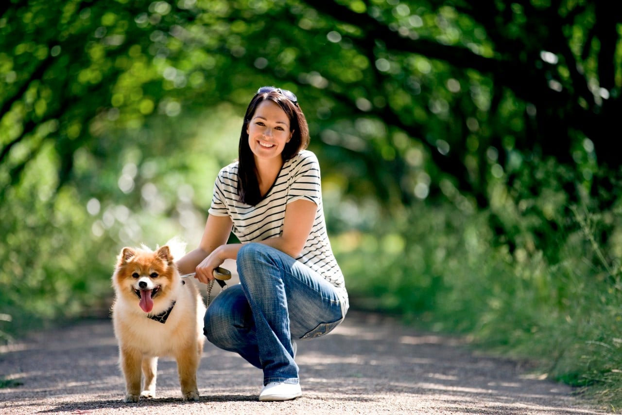 Young Woman And Dog Outdoors In Summertime