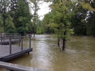 SRC flood 2