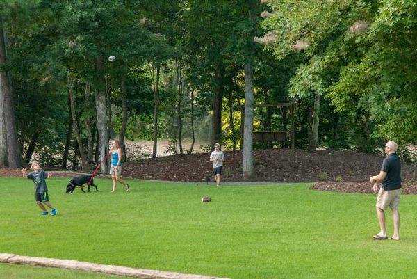 SRC-dog-park-green