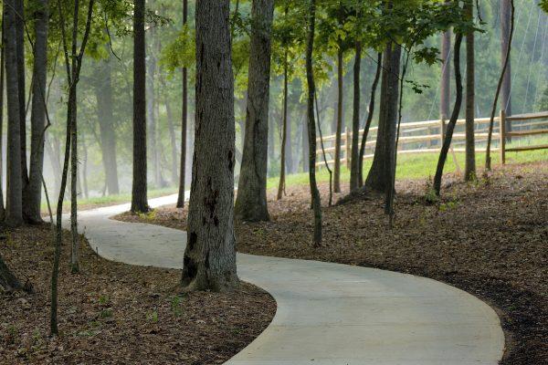 SRC trees.path